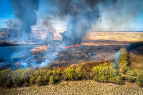 Foc Tulcea (3)